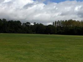 field 04. by greenleaf-stock