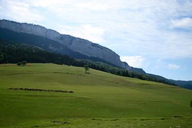 alpine meadow 01. by greenleaf-stock