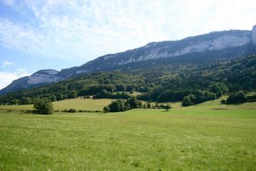 alpine meadow 02. by greenleaf-stock