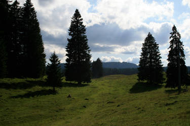 alpine meadow 03. by greenleaf-stock