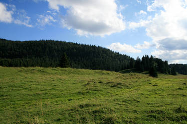 alpine meadow 04. by greenleaf-stock