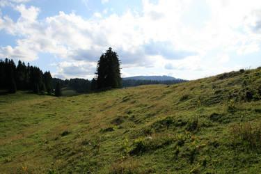 alpine meadow 05. by greenleaf-stock