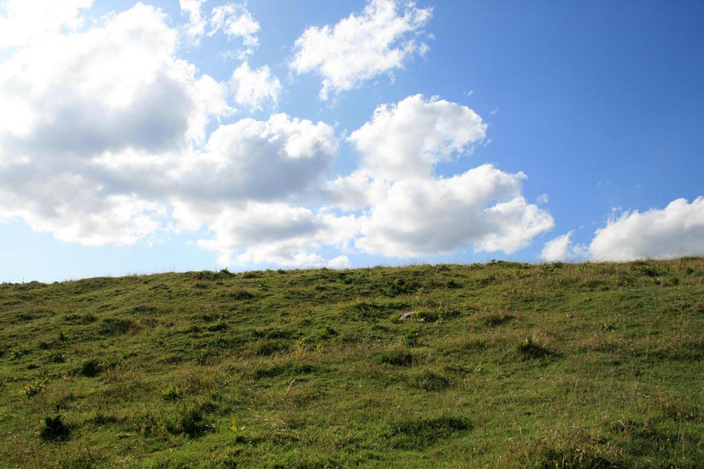 alpine meadow 06. by greenleaf-stock