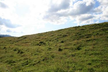 alpine meadow 07.
