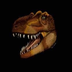 Daspetosaurus torosus by Paleoartists