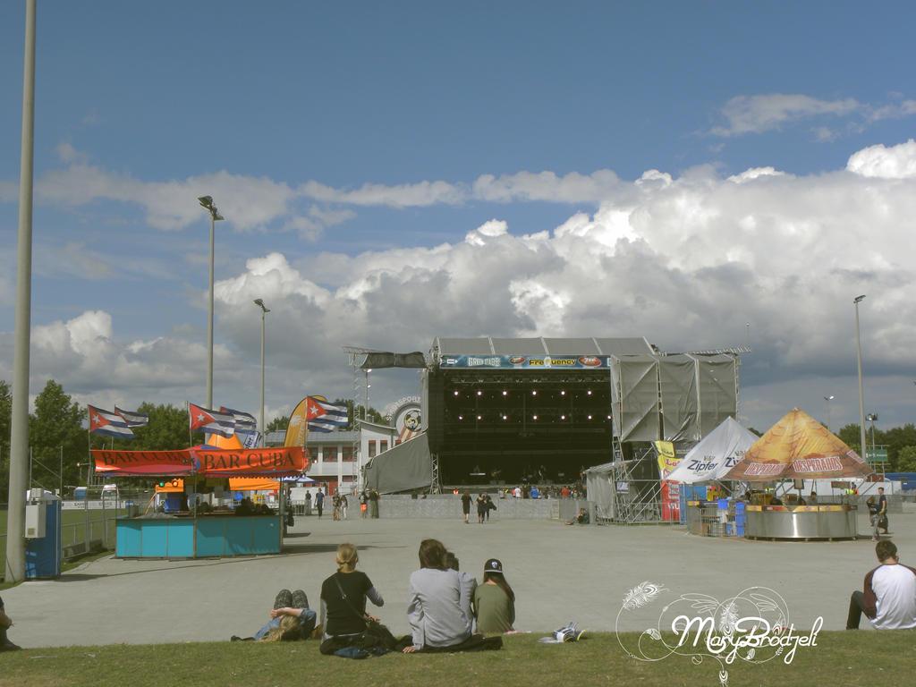 Frequency Festival 2014. Austria, St.Polten by MaryBrodzeli