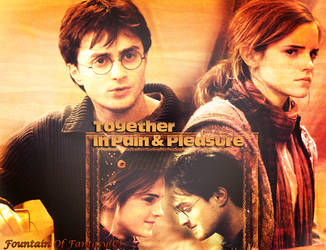 Love birds Harry Hermione by magicrubbish