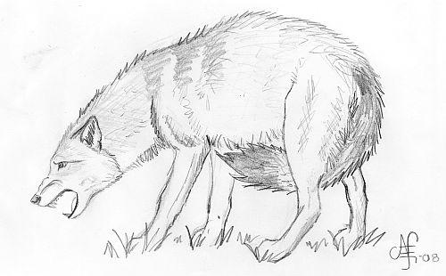 Growling wolf by Liseliza on DeviantArt