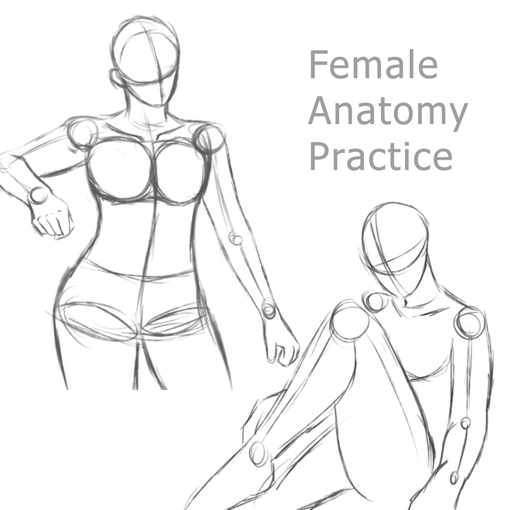 Female Anatomy Practice 1 by RuuRuu-Chan on DeviantArt
