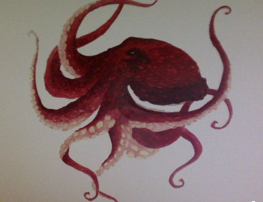 Giant pacific octopus by MoonstarofThunder