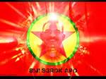 Long Live Serok Apo PKK