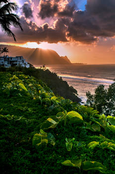 Good night, Princeville Revisited
