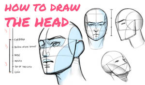 Tutorial - How to draw the head from any angle