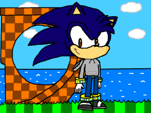 Kevin The Hedgehog kevinthehedgeho...