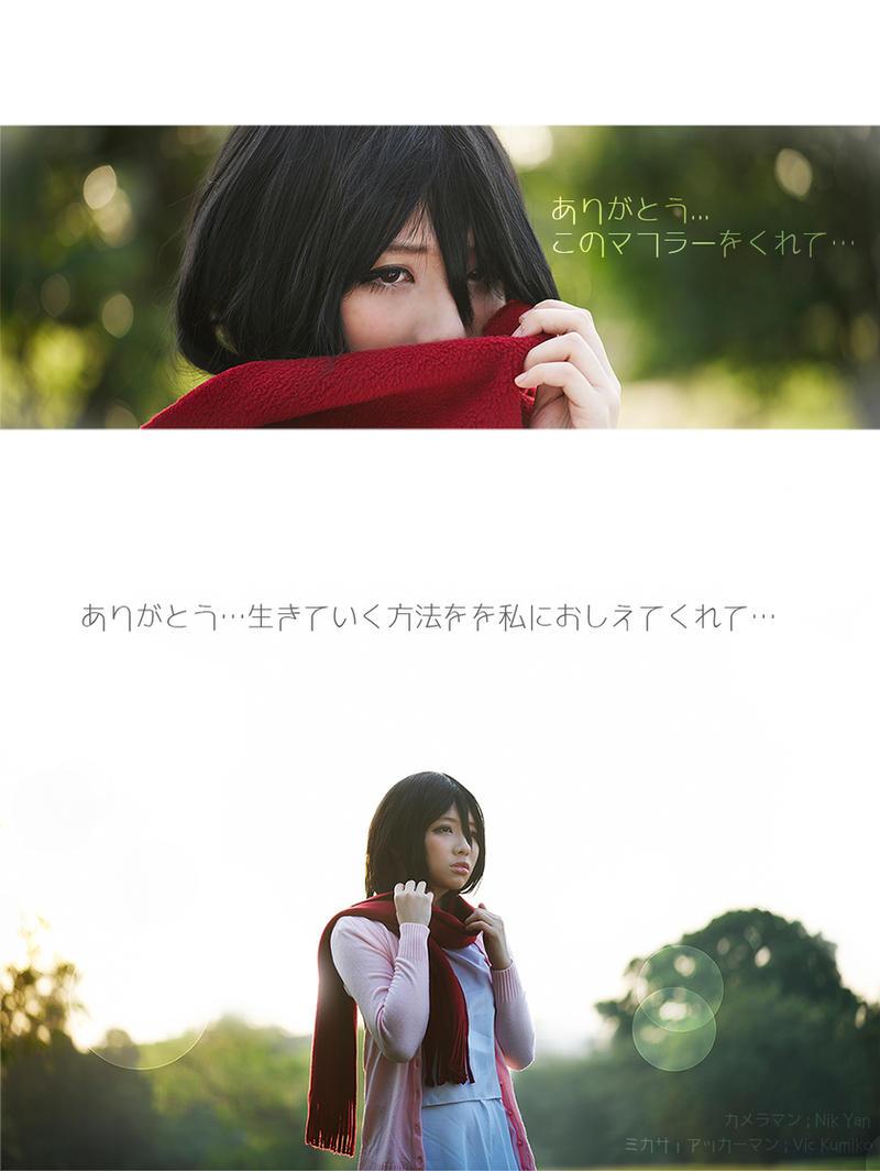 Shingeki No Kyojin : Crimson Dyed Memories by thebakasaru