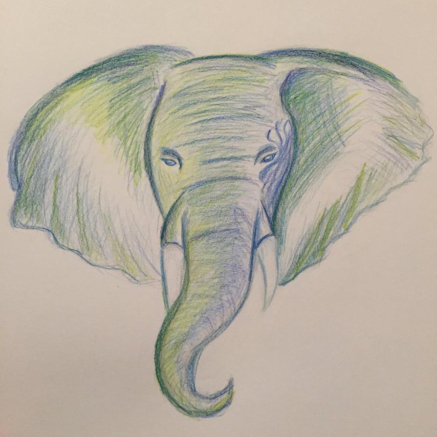 Elephant by Poke-Dave