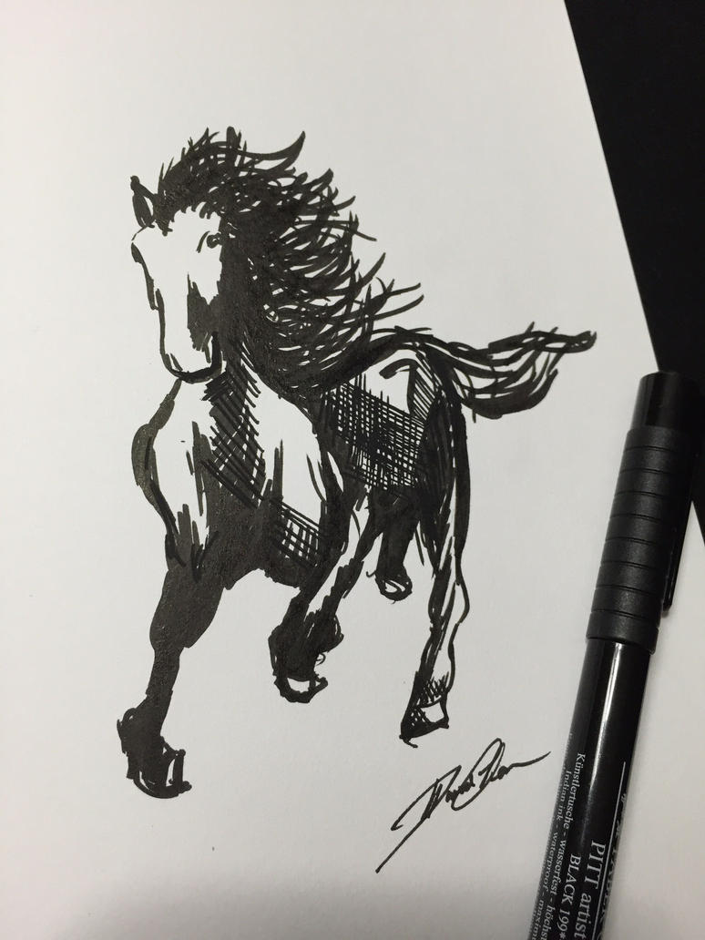 Horse ink drawing by Poke-Dave