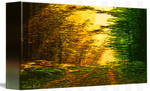 Picture 2015063 Justin Beck sunset in the Forest c