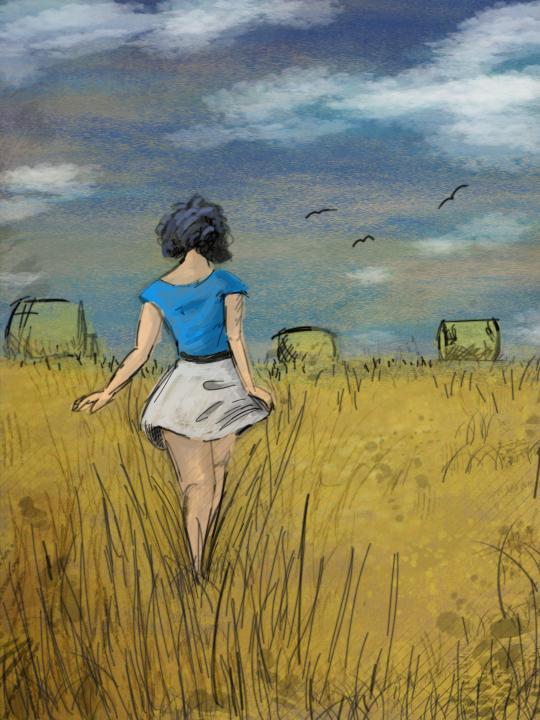 Field by blane2