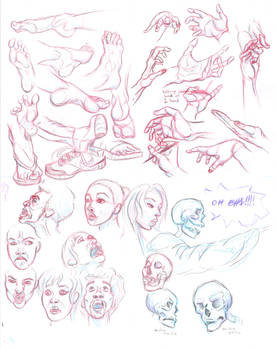 Hands, Feet, and Heads Study