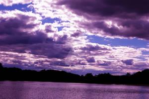 purple takin' over