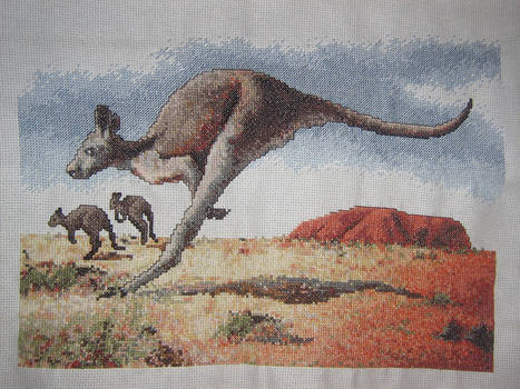 Kangaroo At The Rock by canadiankazz
