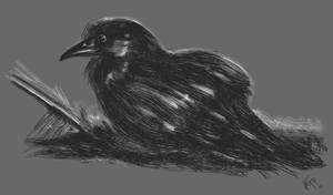 Sitting Raven by KxG-WitcheR