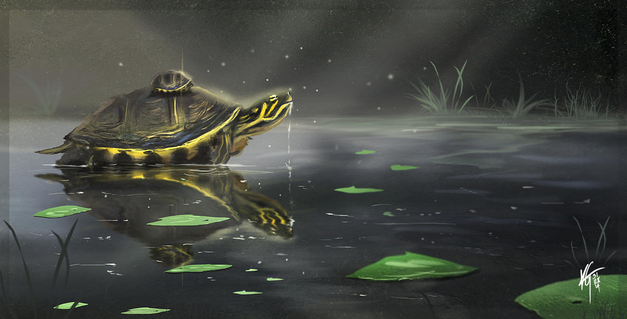 Turtle Pond by KxG-WitcheR