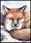 Winter (ACEO)