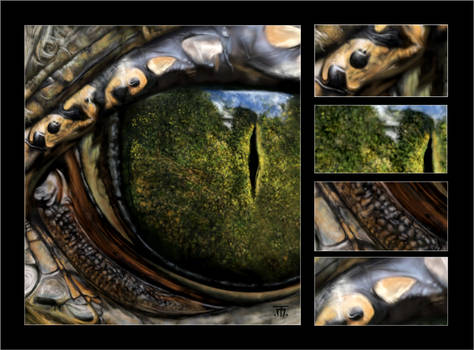 The Reptiles (see two different views at once)