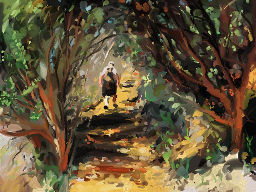Cecilia Forest Trail by WildCat-ZA