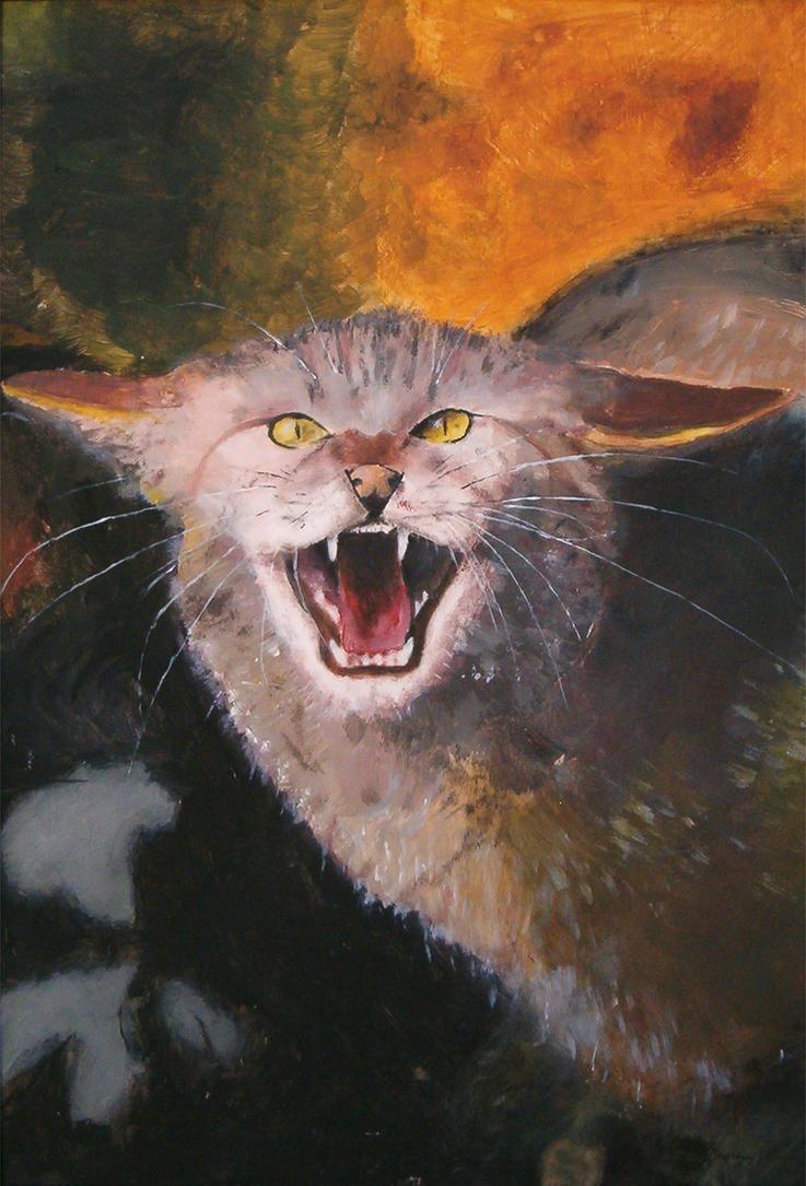 Wildcat by WildCat-ZA