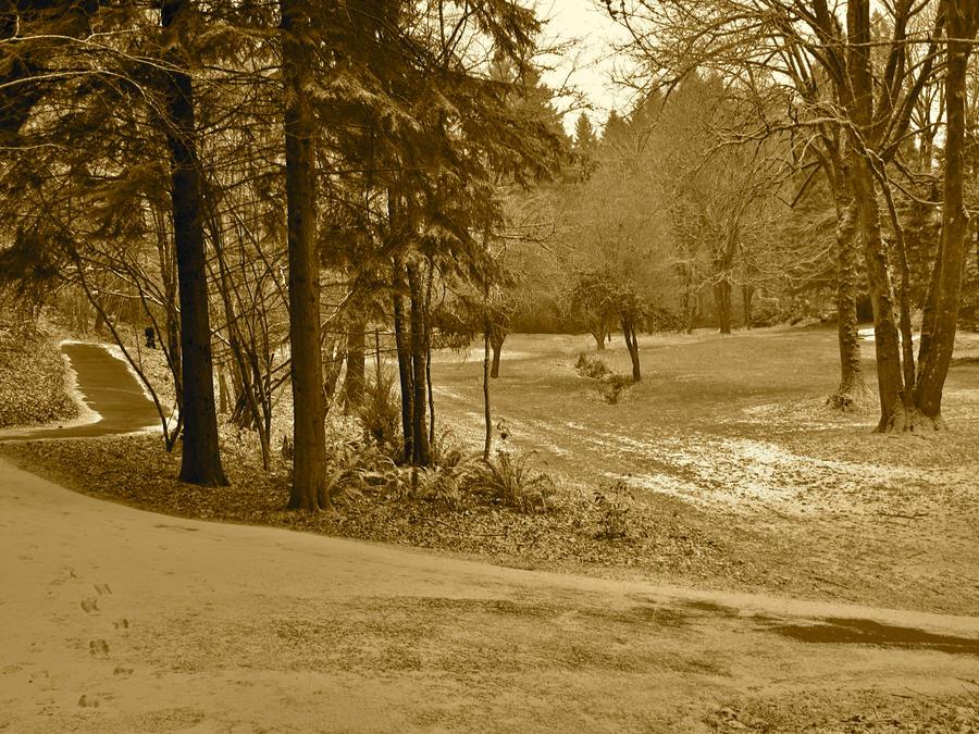 Winter Park by Foxiwan