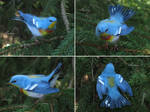 [Needle felted] Northern parula by Riesz-Aurea