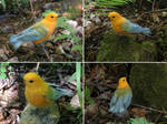 [Needle felted] Prothonotary warbler by Riesz-Aurea
