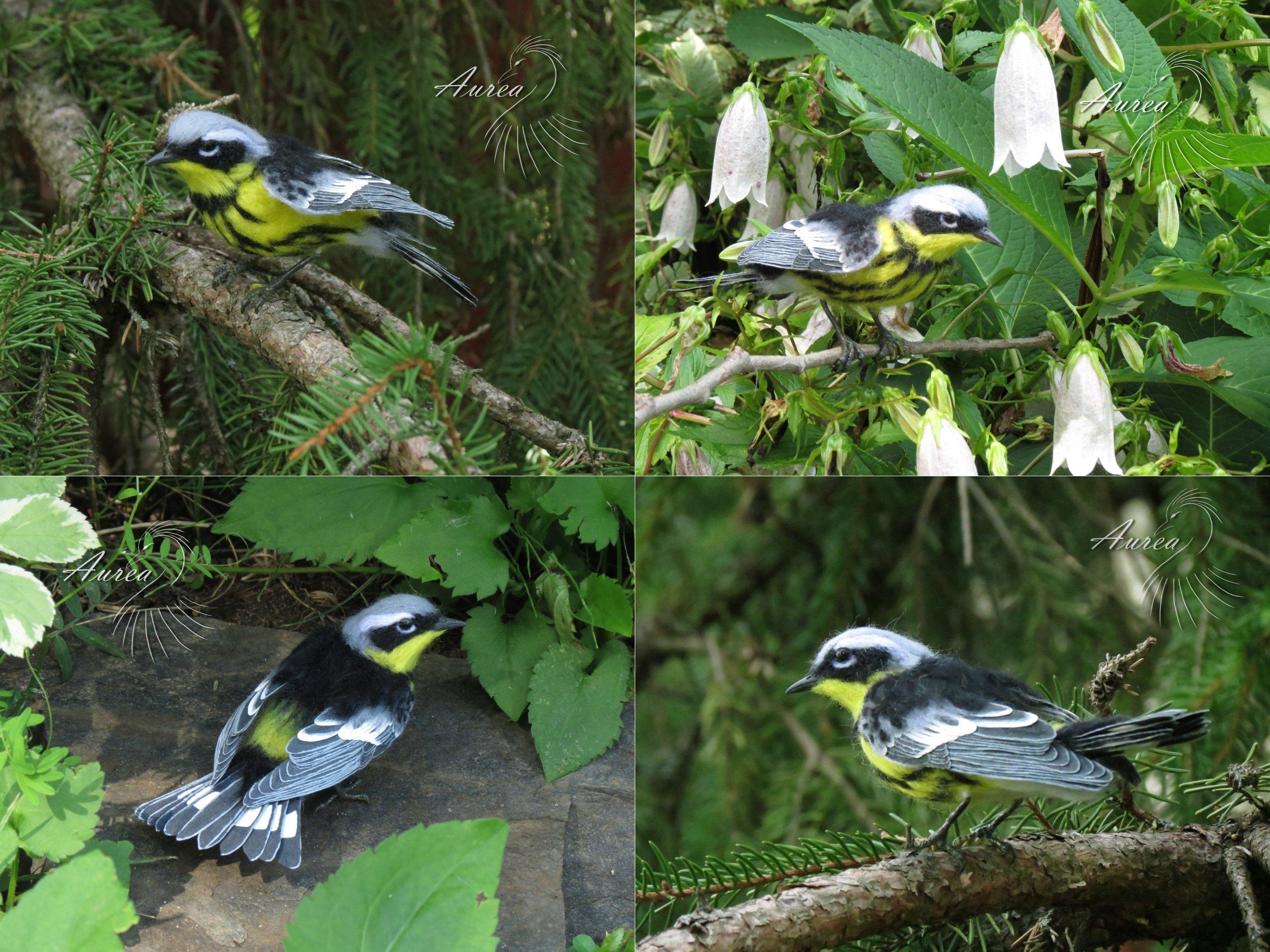 [Needle felted] Magnolia warbler