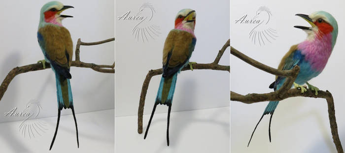 [Needle felted] Lilac-breasted roller