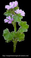 flowers bluebells2