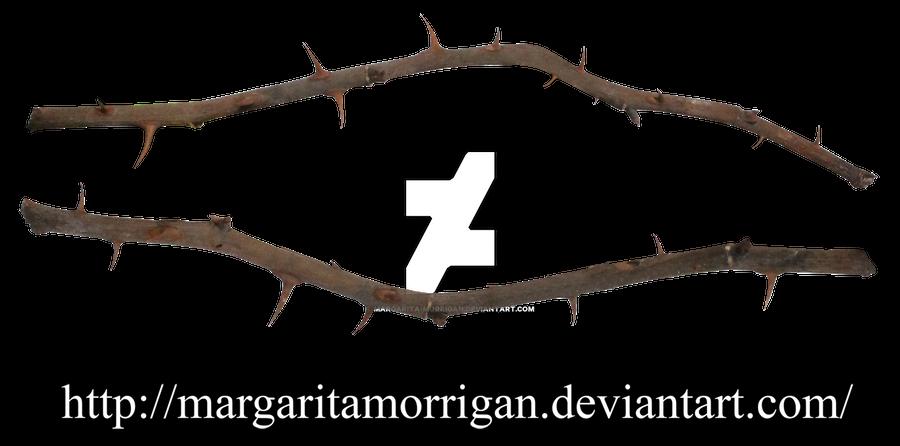 thorns of roses by margarita-morrigan