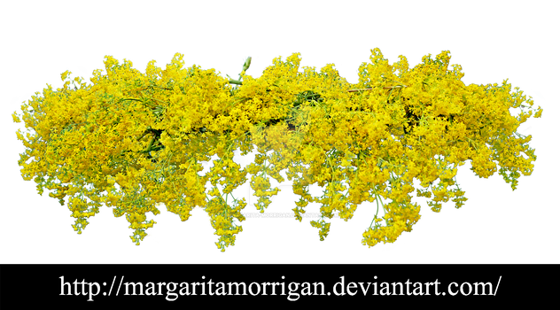 wreath of yellow flowers