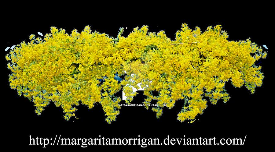 Wreath Of Yellow Flowers By Margarita Morrigan On Deviantart