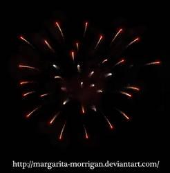 firework by margarita-morrigan