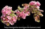 flowering branch 1