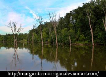 lake 1 by margarita-morrigan