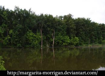 lake 4 by margarita-morrigan