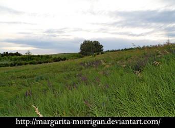 meadow 2 by margarita-morrigan
