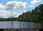 lake 8 by margarita-morrigan