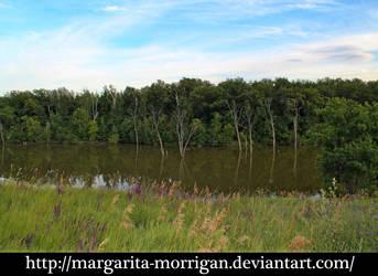 lake 9 by margarita-morrigan