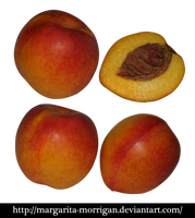 nectarine fruit by margarita-morrigan