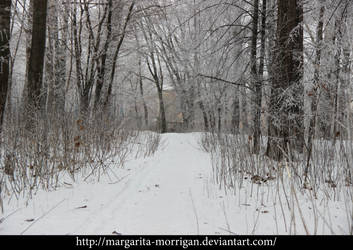 winter background4 by margarita-morrigan